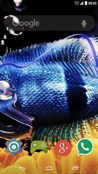 3D Fish Live Wallpaper poster