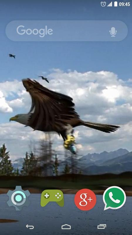 Flying Eagle Live Wallpaper Apk Screenshot