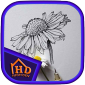 Flower Sketches icon