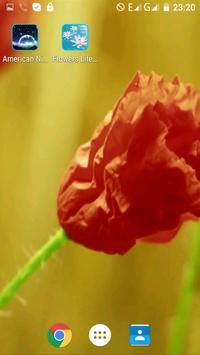 Flowers Life Video Wallpaper apk screenshot