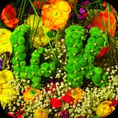 Flowers 4K Video Wallpaper icon