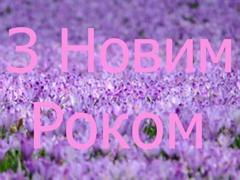 З Новим Роком poster