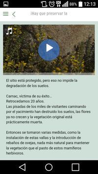 Alineamientos de Carnac screenshot 2