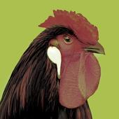 Ferme de la poule noire icon