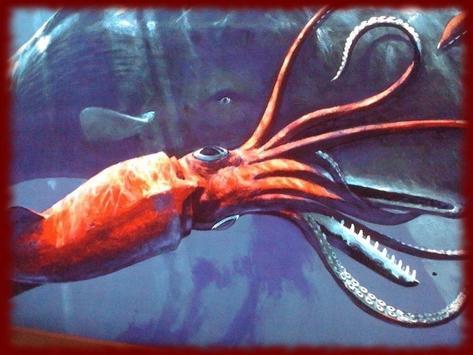 Squid wallpapers apk screenshot