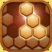 Hexa Block Puzzle icon
