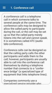 Conference Call screenshot 2