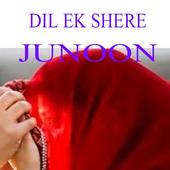 Dil Ik Shehar e Junoon icon
