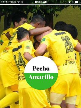 Guastatoya Noticias - Futbol de los Pecho Amarillo screenshot 6