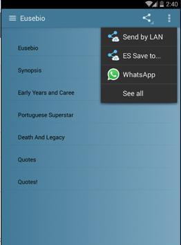 Eusebio screenshot 2