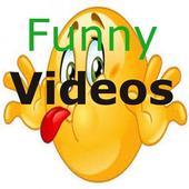 Funny Videos Community  International icon
