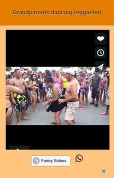 Funny videos screenshot 2