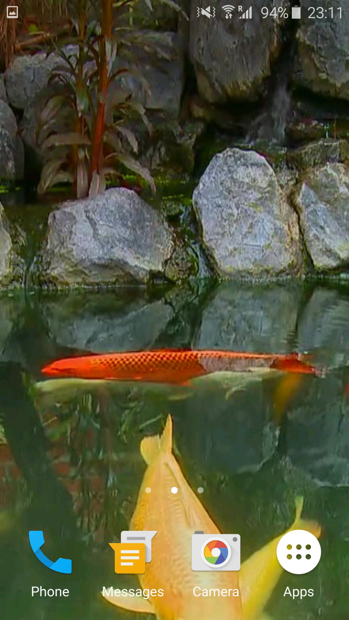 Koi Fish Video Wallpaper 3d For Android Apk Download