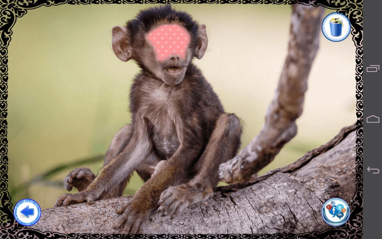 marco de la foto de la cara del mono Descarga APK - Gratis ...