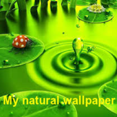 Natural wallpaper icon