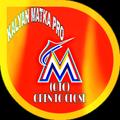 Kalyan Matka (PRO)