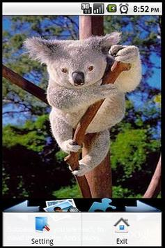 Koala Puzzle screenshot 1