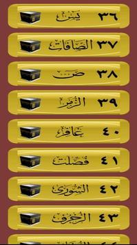 القرآن صوت و صورة بدون نت بصوت الشيخ الغامدي screenshot 3