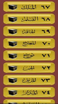 القرآن صوت و صورة بدون نت بصوت الشيخ الغامدي screenshot 4