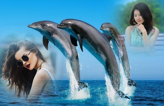 Dolphin Photo Frame apk screenshot