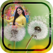 Dandelion Photo Frames icon
