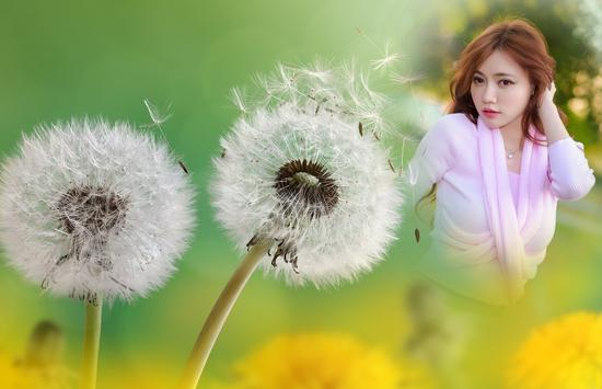 Dandelion Photo Frames apk screenshot