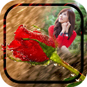 Rainy Rose Photo Frame icon