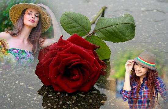 Rainy Rose Photo Frame screenshot 4