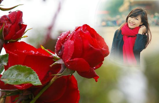 Rainy Rose Photo Frame screenshot 1