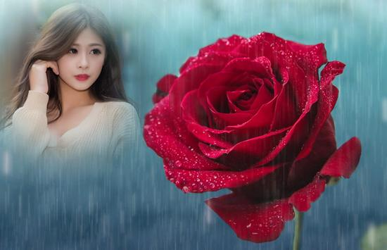 Rainy Rose Photo Frame screenshot 2