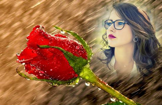Rainy Rose Photo Frame screenshot 3