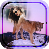 Wolf Photo Frames icon