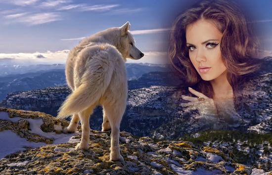Wolf Photo Frames apk screenshot