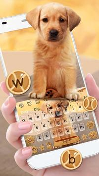 Cute Dog Labrador screenshot 1