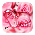 Pink Rose Flower Drops Theme