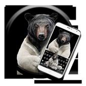 Bear the keyboard theme icon