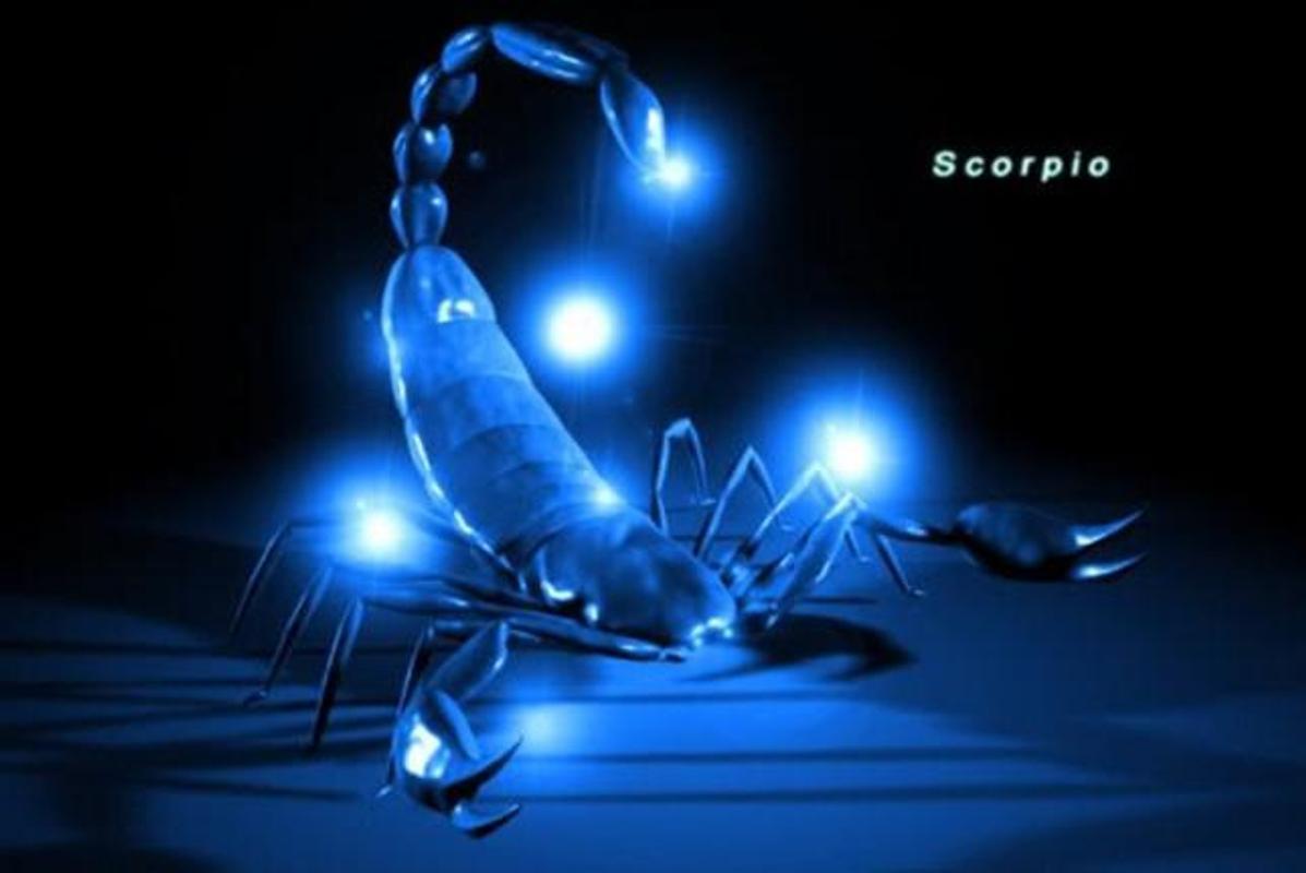 Scorpion Wallpaper Poster Screenshot 1 2