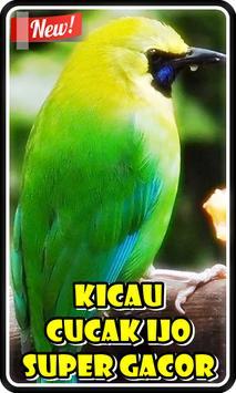 Kicau Cucak Ijo Super Gacor poster