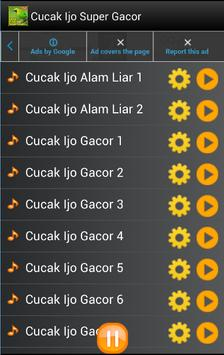 Kicau Cucak Ijo Super Gacor screenshot 1