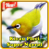 Kicau Pleci Super Ngerol icon