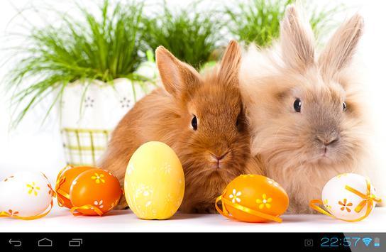 Rabbit Live Wallpaper screenshot 1