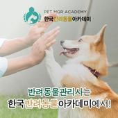 반려동물관리사-반려동물자격증,반려동물교정사,반려동물장례지도사 Zeichen