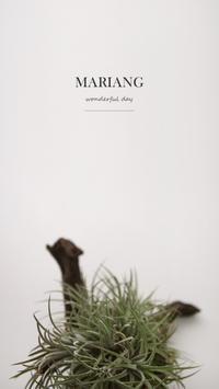 마리앙 poster