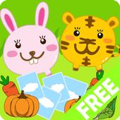 Animori Card_FreeHD icon