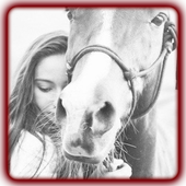 HORSEDAY icon