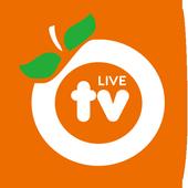 오렌지티비 라이브 icon