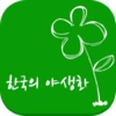 우리나라 야생화 icon