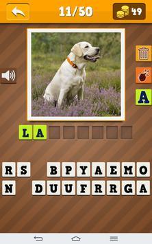 Dog Breeds Quiz poster
