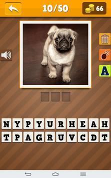 Dog Breeds Quiz screenshot 5