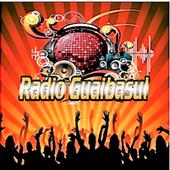 Rádio Guaibasul Toca De Tudo icon